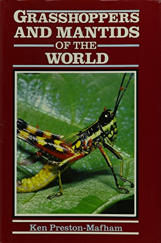 9780756770716: Grasshoppers & Mantids of the World