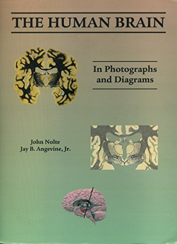 9780756774059: Human Brain: In Photographs And Diagrams