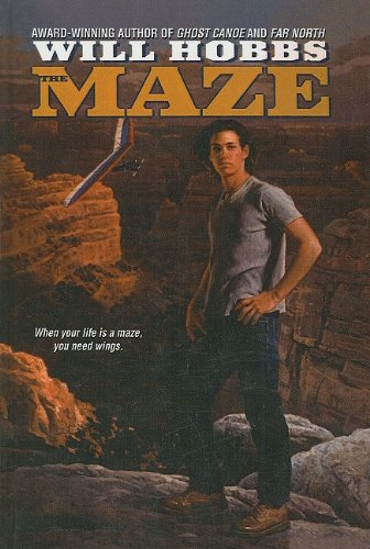 9780756903350: The Maze (Avon Camelot Books (Pb))