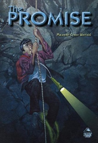 9780756912277: The Promise (Summit Books)