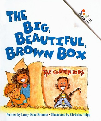 9780756933296: The Big, Beautiful, Brown Box (Rookie Choices (Pb))