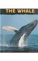 9780756936471: Whale: Giant of the Ocean (Animal Close-Ups (Pb))