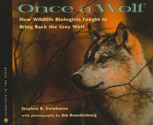 9780756942052: Once a Wolf: How Wildlife Biologists Fought to Bring Back the Gray Wolf (Scientists in the Field (Pb))