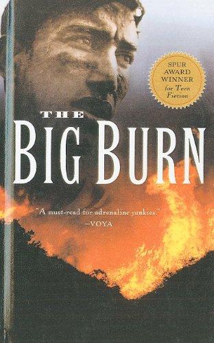 9780756942830: The Big Burn