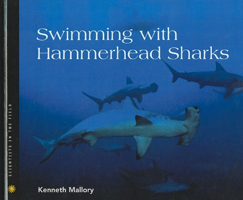 9780756951931: Swimming with Hammerhead Sharks