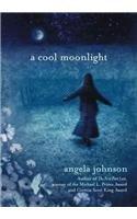 9780756952150: A Cool Moonlight
