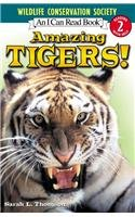 9780756954314: Amazing Tigers! (Wildlife Conservation Society Books)