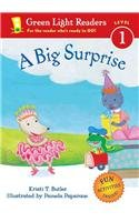 9780756954420: A Big Surprise (Green Light Readers: Level 1)