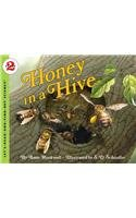 9780756957841: Honey in a Hive (Let's-Read-And-Find-Out Science: Stage 2 (Pb))