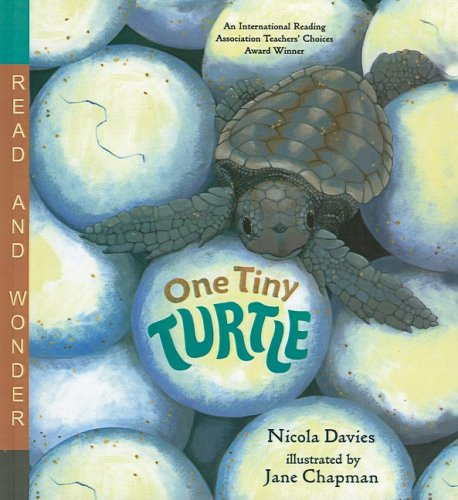 9780756965624: One Tiny Turtle (Read and Wonder (Pb))