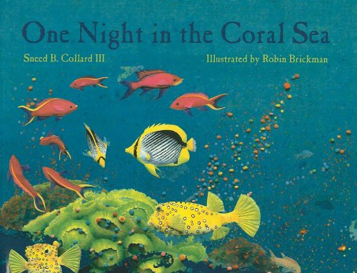 9780756969691: One Night in the Coral Sea