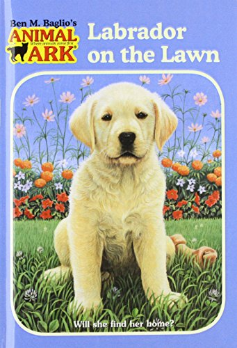 9780756976361: Labrador on the Lawn (Animal Ark (Pb))