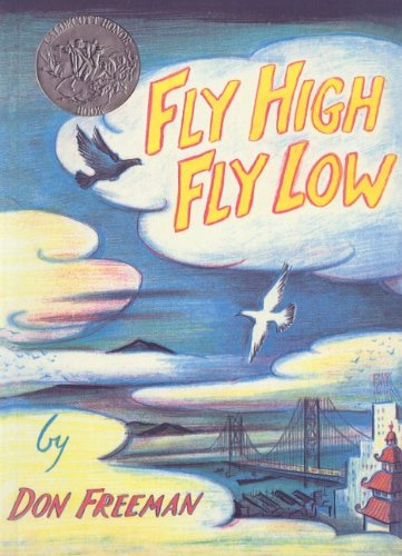 9780756980016: Fly High, Fly Low
