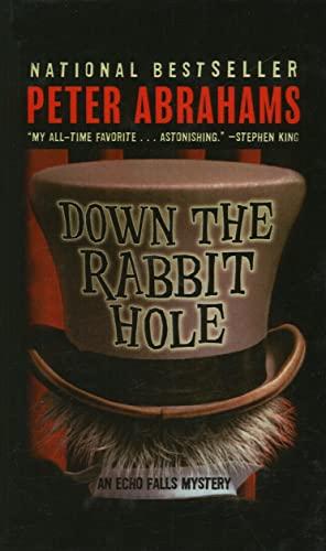 9780756982737: Down the Rabbit Hole (Echo Falls Mysteries (Prebound))