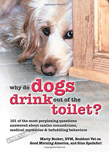 9780757305726: Why Do Dogs Drink Out of the Toilet?: 101 of the Most Perplexing Questions Answered About Canine Conundrums, Medical Mysteries & Befuddling Behaviors