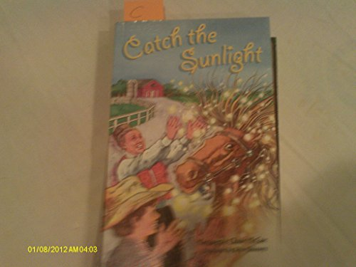 9780757820267: Catch the Sunlight