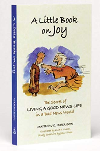 9780758631152: A Little Book on Joy: The Secret of Living a Good News Life in a Bad News World