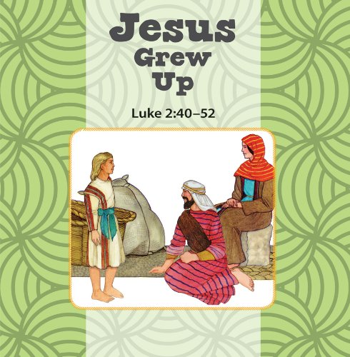 Jesus Grows Up / Jesus Calms the Storm Flip Book: Judy Williams
