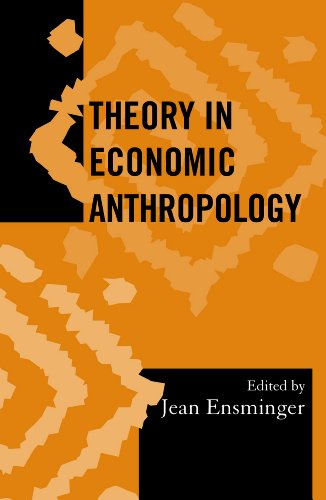 Theory in Economic Anthropology (Society for Economic Anthropology Monograph Series)