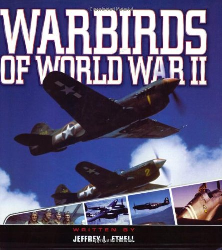 Warbirds of WW2 (Enthusiast Color): Jeffrey Ethell