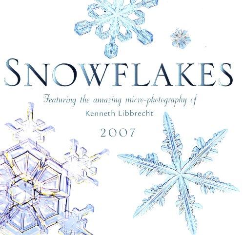 9780760325100: Snowflakes 2007