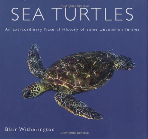 9780760326442: Sea Turtles: An Extraordinary Natural History of Some Uncommon Turtles