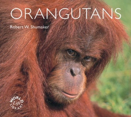 9780760329993: Orangutans (WorldLife Library)