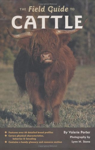9780760331927: The Field Guide to Cattle