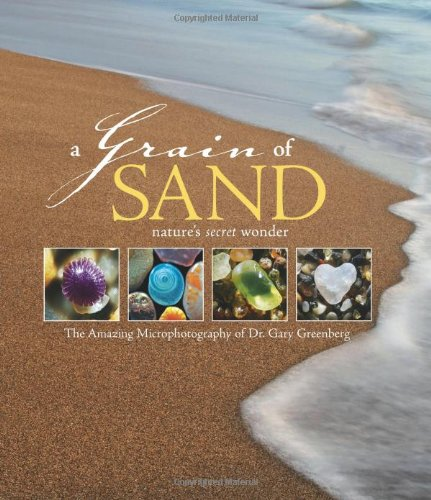 9780760331989: A Grain of Sand: Nature's Secret Wonder