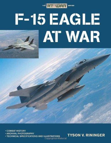 9780760333501: F-15 Eagle at War
