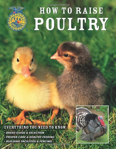 How to Raise Poultry Everything You Need to Know Breed Guide & Selection Proper Care & Healthy Fe...