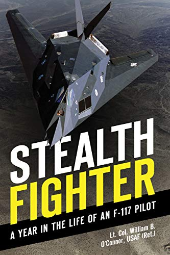 9780760341353: Stealth Fighter: A Year in the Life of an F-117 Pilot
