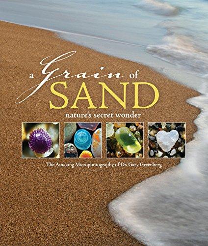 9780760361436: A Grain of Sand: Nature's Secret Wonder