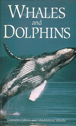 Whales and Dolphins: Cafiero, Gaetano and