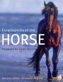 9780760711576: Encyclopedia of the Horse