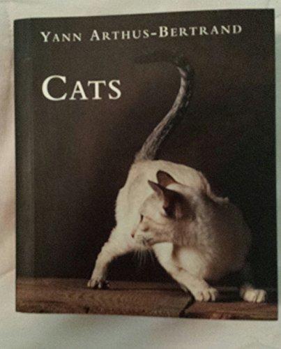 9780760722176: Cats