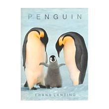 9780760722817: Penguin