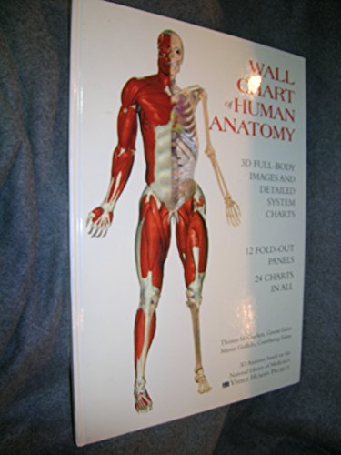 9780760724088: Wallchart of Human Anatomy: 3 D Full-Body Images, Detailed System Charts