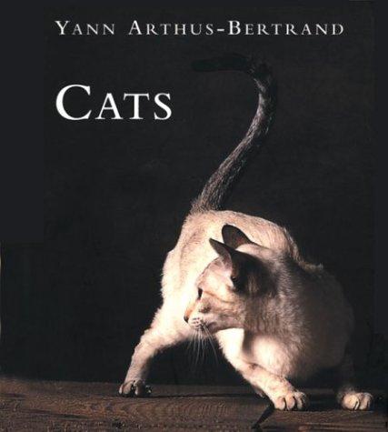 9780760747155: Cats