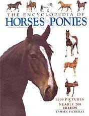 The Encyclopedia of Horses Ponies: Tamsin Pickeral