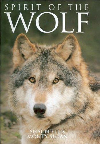 9780760780633: Spirit of the Wolf