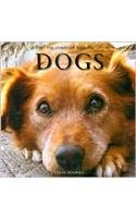 The Complete Book of Dogs: Colin Dempsey