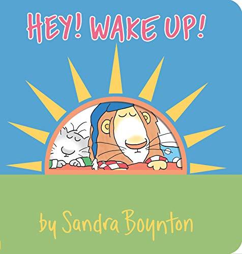 9780761119760: Hey! Wake Up! (Boynton on Board)