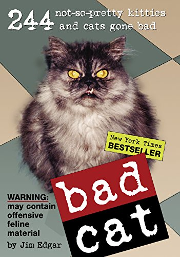 9780761136194: Bad Cat: 244 Not-So-Pretty Kitties And Cats Gone Bad