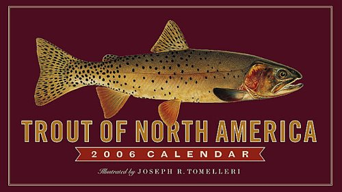 9780761137573: Trout of North America 2006
