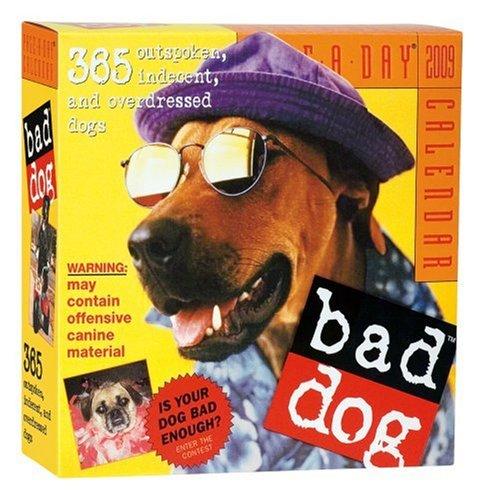 9780761149262: Bad Dog Page-A-Day Calendar 2009