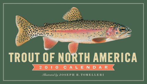 9780761153269: Trout of North America Calendar 2010