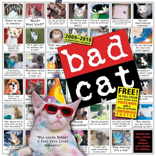9780761153290: Bad Cat Calendar [With Full-Of-Attitude Centerfold and 12 Full-Color Cat-Gone-Bad]