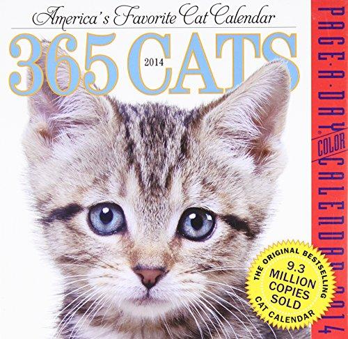 9780761171973: 365 Cats 2014 Calendar