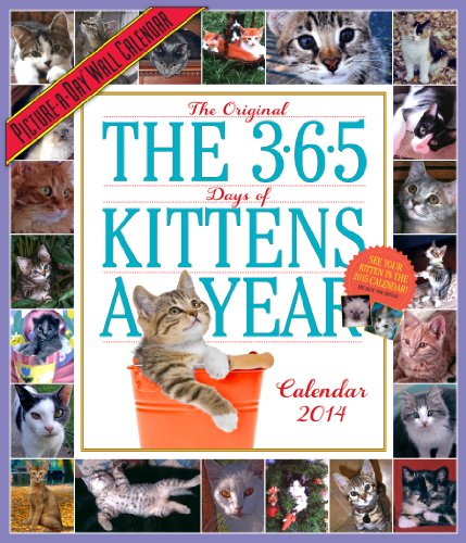 9780761173106: 365 Kittens-a-Year 2014 Wall Calendar (Picture-A-Day Wall Calendars)